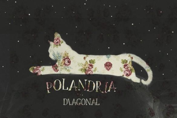 POLANDRIA PORTADA